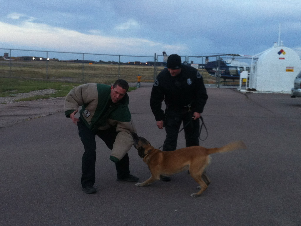 colorado-springs-police-k9